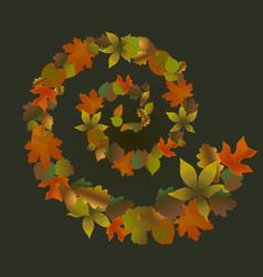 fallen leaves spiral vector image vector image