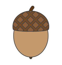 Flat color acorn icon vector