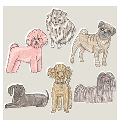 Set of cute little breed dogs vector