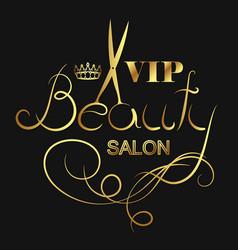 beauty salon vip vector image