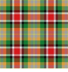 Seamless pattern scottish tartan alabama vector