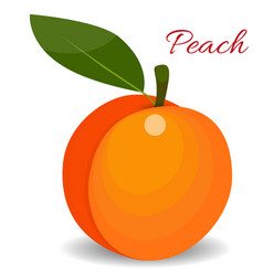 peach with leaf isolated on white flat style vector image