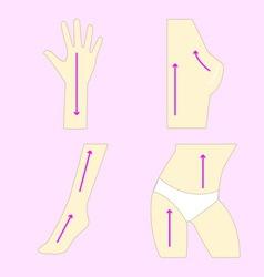 Easy massage anti body wrinkle vector