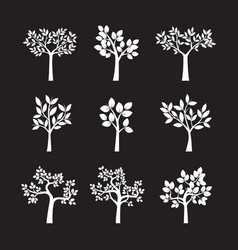 set of white trees and leafs vector image vector image