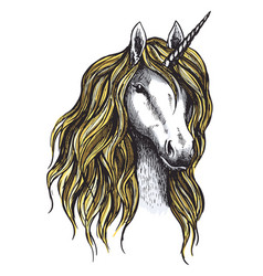 Unicorn horse mystic magic animal sketch vector