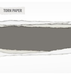 Torn paper pieces on grey vector