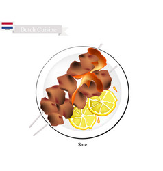 Sate or dutch style barbecue served with peanut sa vector