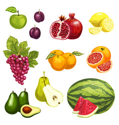 flat icons of tropical exotic fruits vector image vector image
