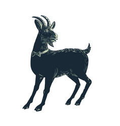 Goat wearing bow tie scratchboard vector