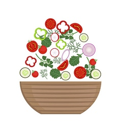 Plate of fresh salad vector image vector image