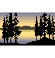 Spruce in riverbank scenery vector image