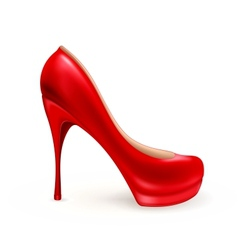Ladies shoe vector image
