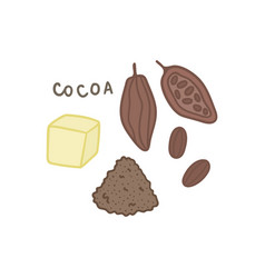 Cocoa superfood isolated on white vector