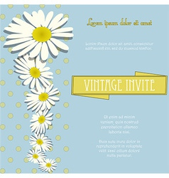 Invite vintage with chamomille flowers and sample vector image vector image