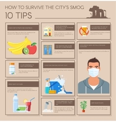 Smog infographic How to vector image