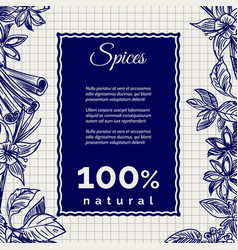 Spices banner on notebook page vector