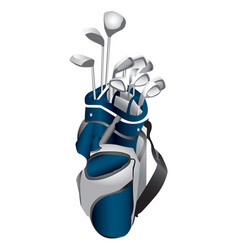 Golf clubs in bag vector