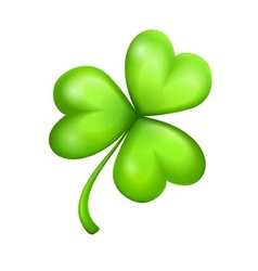 leaf of green clover vector image vector image