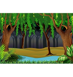 Forest scene with trees and river vector