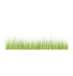 Grass border in grunge style vector