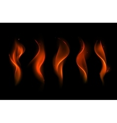 Set of different red scarlet fire flame vector