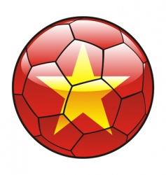vietnam flag on soccer ball vector image