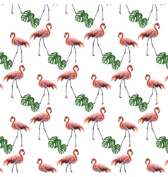 Flamingo birds and palm leaves pattern vector