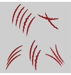 Animal claws vector
