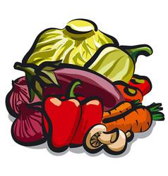 vegetables for nutrition vector image