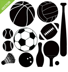Sport equipment vector image