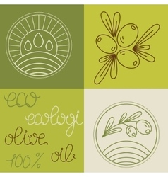 Set of olive oil logos vector