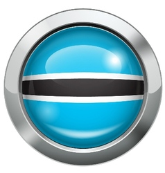 Botswana flag metal button vector image