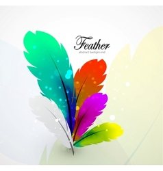color feathers abstract background vector image vector image