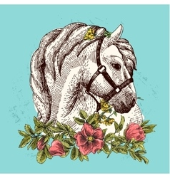 Horse with flower vector