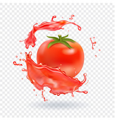 tomato juice fresh splash realistic icon vector image vector image