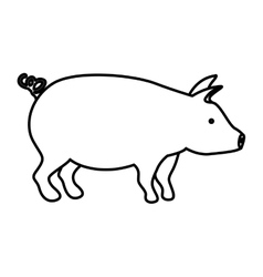 Isolated pork design vector