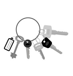 Key set with keyring vector