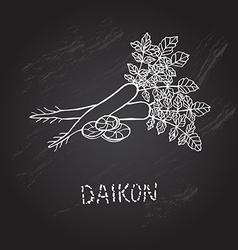 hand drawn daikon vector image