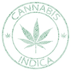 Cannabis stamp vector