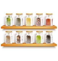 Herbs spices set composition vector