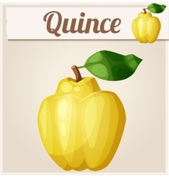 Quince fruit cartoon icon vector
