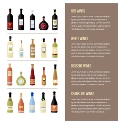 Set of different kinds wine bottles in flat vector image