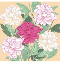 Background with white and one pink peonies vector