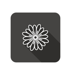 Camomile flower icons floral symbol vector