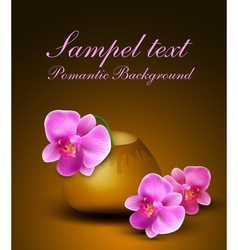 romantic background with vase and orchids vector image