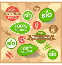 eco and bio labels vector image