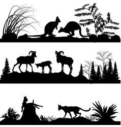 Wild animals kangaroos sheep wild cats vector