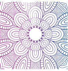 Beautiful mandala design vector