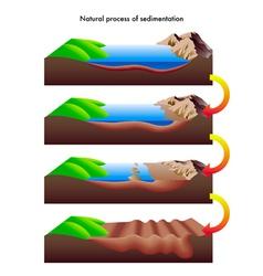 Process of sedimentation vector