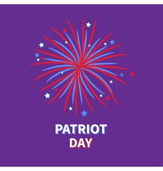 Patriot day big fireworks night sky star and strip vector
